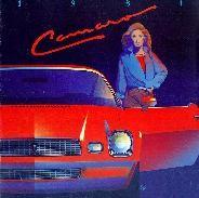 1 1981 cam