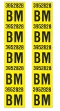 1969 Chevelle Big Block SS396 Standard Rear Coil Spring Decals, Code BM