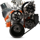 EMS Chevy Small Block Raven V-Drive Kit, No AC, Plastic PS Res, Gloss Black Anodized: MS118-32BA