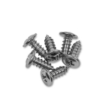 1964-1972 Chevelle Convertible Top Boot Channel Screws, Chrome