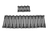 1965-1972 Chevelle Big Block Cylinder Head Bolts